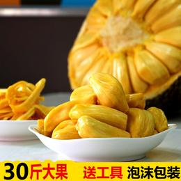 当天发30斤海南新鲜水果三亚菠萝蜜大树菠萝干苞波罗蜜假榴莲