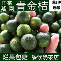 满5斤包邮越南青金桔新鲜小青桔小柠檬越南水果橘子青桔青桔果
