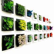 植物壁挂仿真壁饰客厅书房墙面装饰现代田园欧式北欧走廊挂件组合