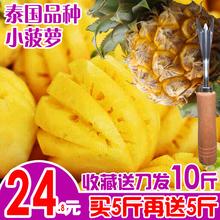 泰国品种小菠萝迷你香水菠萝特产水果小凤梨新鲜当季时令带箱10斤