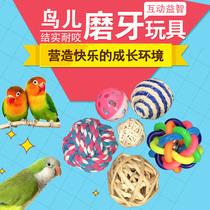 宠物鸟脚下 鸟用品用具 脚抓 哆美丽 鹦鹉啃咬玩具球 下脚玩具