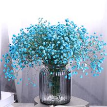 满天星干花束家居装 饰客厅卧室摆设插花勿忘我永生花小清新带花瓶