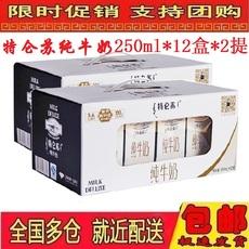 蒙牛特仑苏纯牛奶250ml*12盒*2箱装 多省包邮 日期新