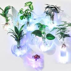 壁挂绿萝水培花瓶创意迷你玻璃小花瓶悬挂透明简约小清新插花花瓶