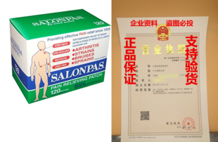 Hisamitsu Salonpas Pain Relieving Patches 120 Patches Per B