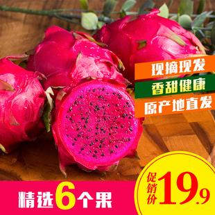 广东湛江红心火龙果6个果园现摘现发水果热带红肉火龙果新鲜 包邮