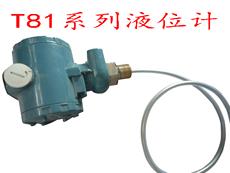液位变送器ZWP-T81防腐型 T82杆式插入式 T83电容式液位变送器