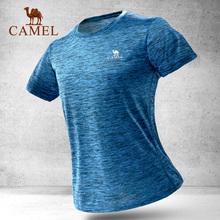 骆驼户外运动T恤男女情侣款透气吸湿速干衣圆领短袖休闲T恤运动服