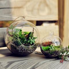现代家居装饰摆件 透明玻璃水培花瓶花器吊瓶挂瓶挂件(超轻透)