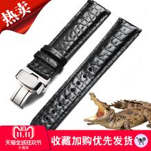 美洲鳄鱼皮手表带男真皮表带女适用西铁城浪琴天梭美度表链20mm19