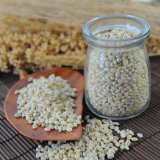 漫山芬芳 荷兰薏米 薏仁 进口薏仁米 薏米仁450g包邮 五谷杂粮