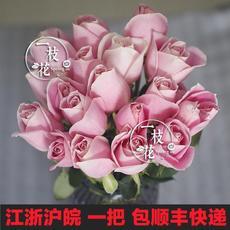 玫瑰花鲜花批发速递生日云南插花上海同城一扎20支家庭包邮花束