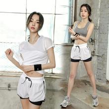 夏季网红速干跑步健身服短裤 瑜伽套装 女2019新款 宽松休闲运动套装