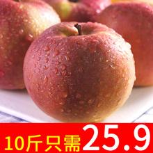 新鲜苹果高山红富士苹果10斤丑苹果冰糖心新鲜当季水果整箱批发