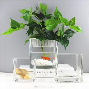 包邮小清新正方形水培器皿植物花盆玻璃花瓶透明方缸绿萝睡莲<span class=H>鱼缸</span>