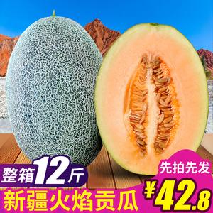新疆<span class=H>哈密瓜</span>网纹瓜当季水果批发包邮新鲜当季整箱10斤甜瓜西州蜜瓜
