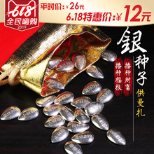 Foot Silver 999 Silver Seed Pure Silver Solid Silver Melon Seed for Manza Collection Gift Settings Buddhist Collection Goods 1