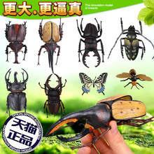 Simulation insect animal static toy children early education puzzle 3d stereo plastic model set 1-3-6 years old