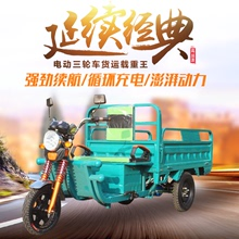 Electric tricycle truck adult new truck Wang Nong express truck freight tricycle family car