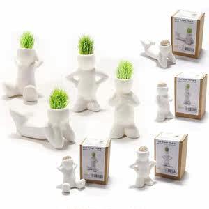 迷你可爱草头娃娃创意情侣植物 室内diy种植小盆栽小草小花农包邮