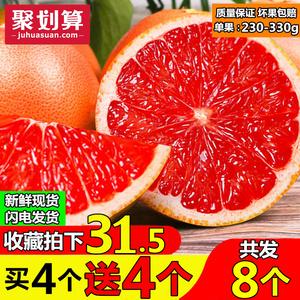 南非进口西柚8个大果新鲜葡萄柚红心<span class=H>柚子</span>孕妇补叶酸水果批发包邮