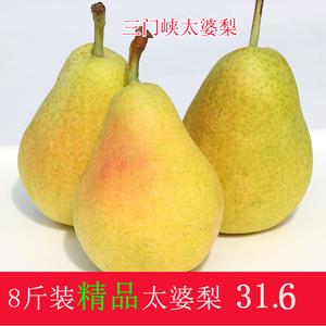 新鲜水果现摘现发太婆<span class=H>梨</span> 香蕉<span class=H>梨</span> 非砀山<span class=H>梨</span>红啤<span class=H>梨</span>8斤包邮水果精品