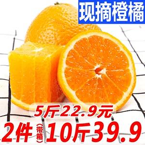 四川柑橘 新鲜<span class=H>水果</span>橘子丑八怪耙耙柑不知火丑橘包邮拍2件带箱10斤