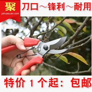 剪刀修枝剪花剪园艺剪刀花艺盆景果树小枝剪家用剪园艺工具包邮