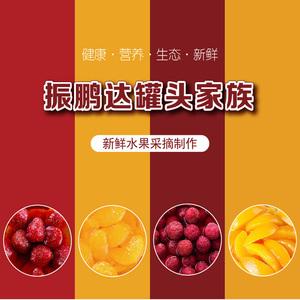 【6瓶装】振鹏达混合水果罐头