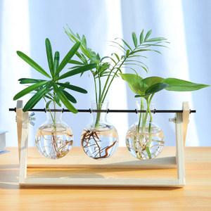 护眼<span class=H>水培</span>植物玻璃瓶水养桌面摆件宿舍办公室室内绿植小型盆栽绿萝