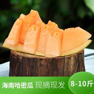 海南<span class=H>哈密瓜</span>当季新鲜水果包邮带箱8-10斤薄皮香瓜甜瓜2个装非新疆